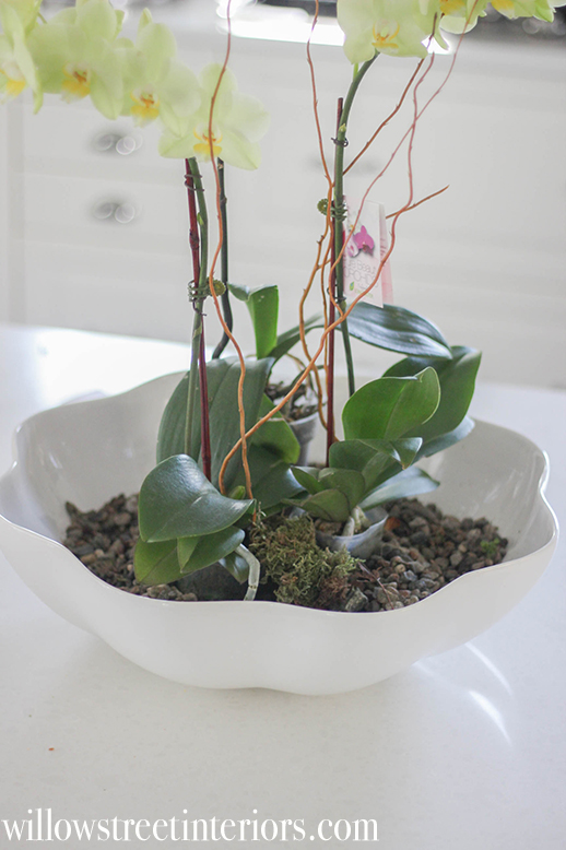how to make an orchid planter