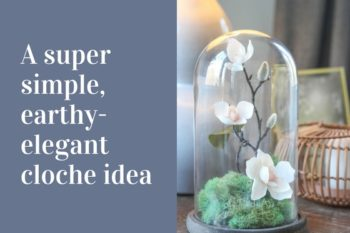 A Pretty Glass Cloche Idea
